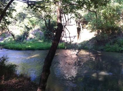 2013-08-25_Creek_Under_Bridge