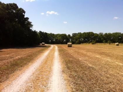2013-08-25_Field_Trails